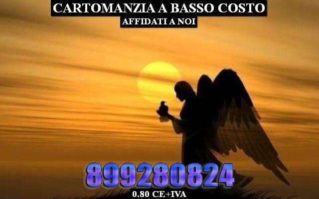 1279146_04226_angelo_thumb_big